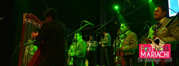 Festival del mariachi